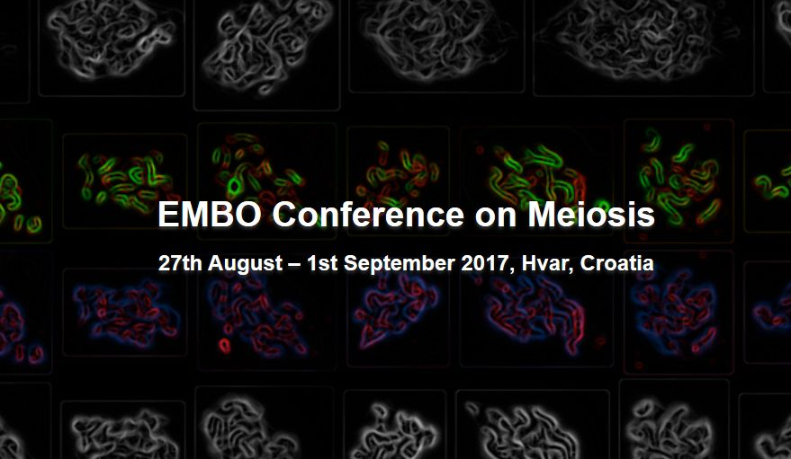 EMBO Conference on Meiosis